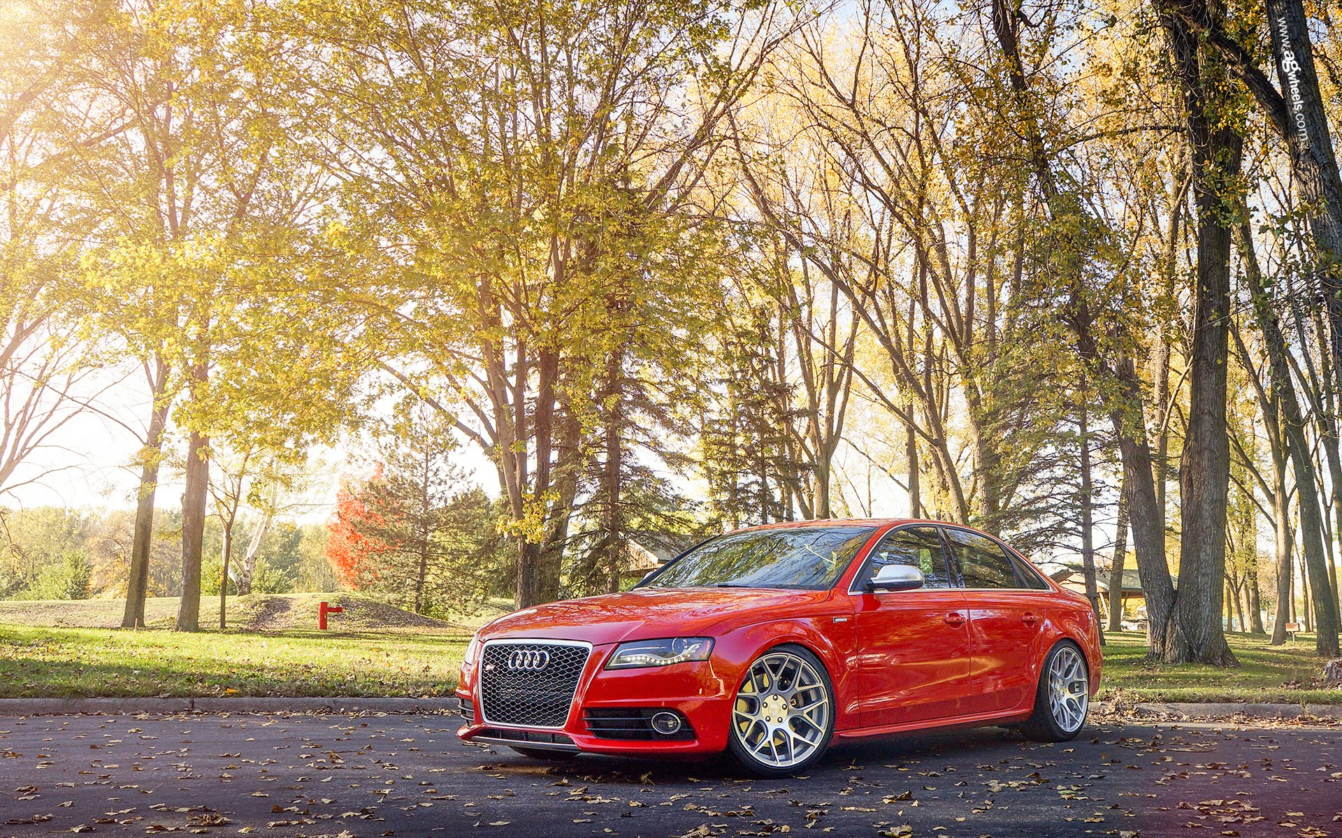 Vehicles - Audi S4  Audi Luxury Car Car Vehicle Red Car Wallpaper