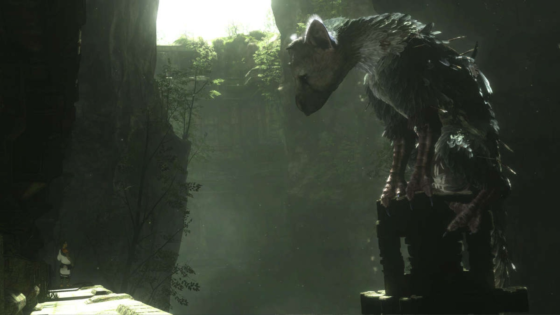 The Last Guardian Hd Wallpaper Background Image 1920x1080 Id