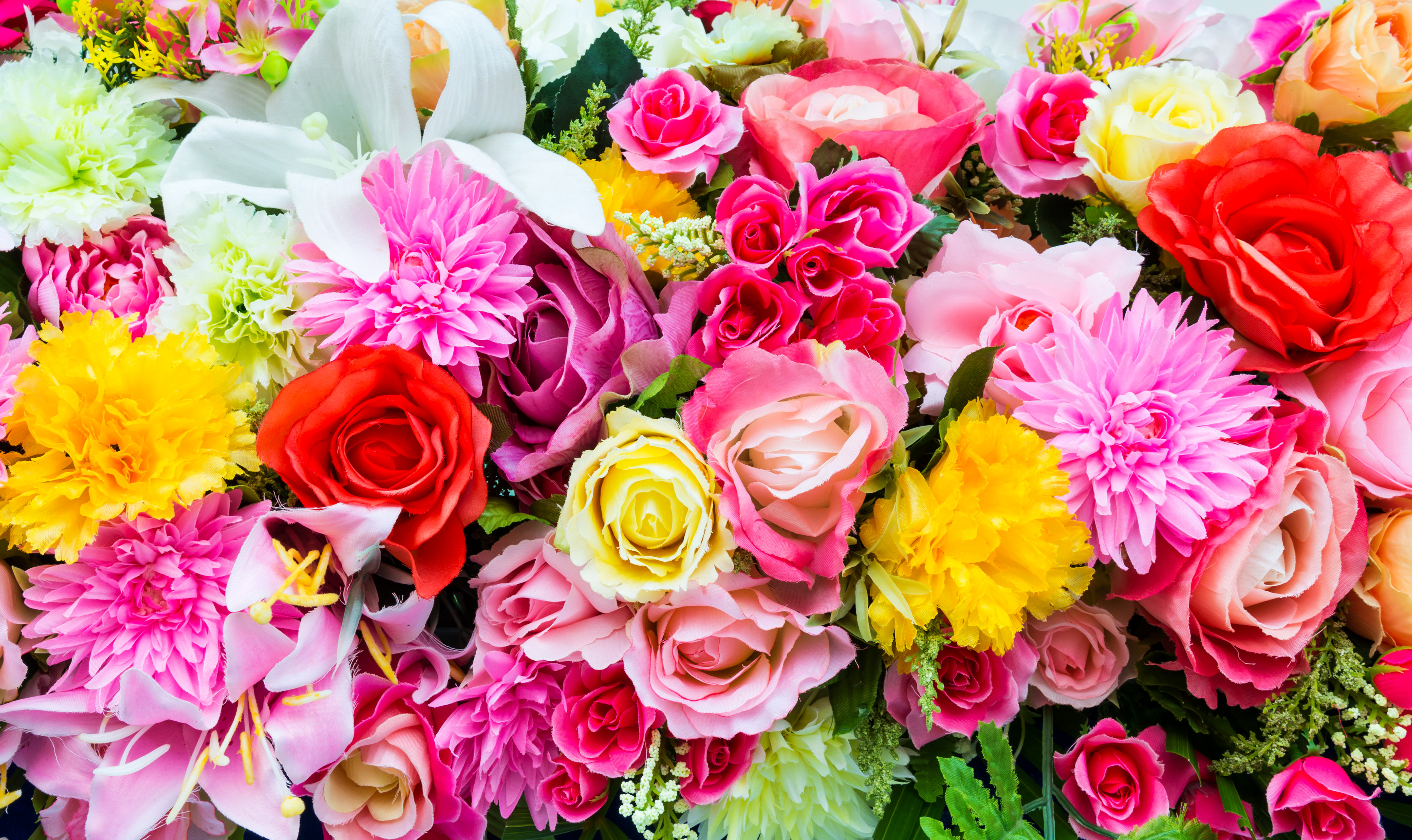 Colorful Flowers 4k Ultra Hd Wallpaper And Hintergrund