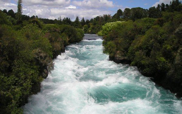 Earth River New Zealand Shrub Nature HD Wallpaper | Background Image