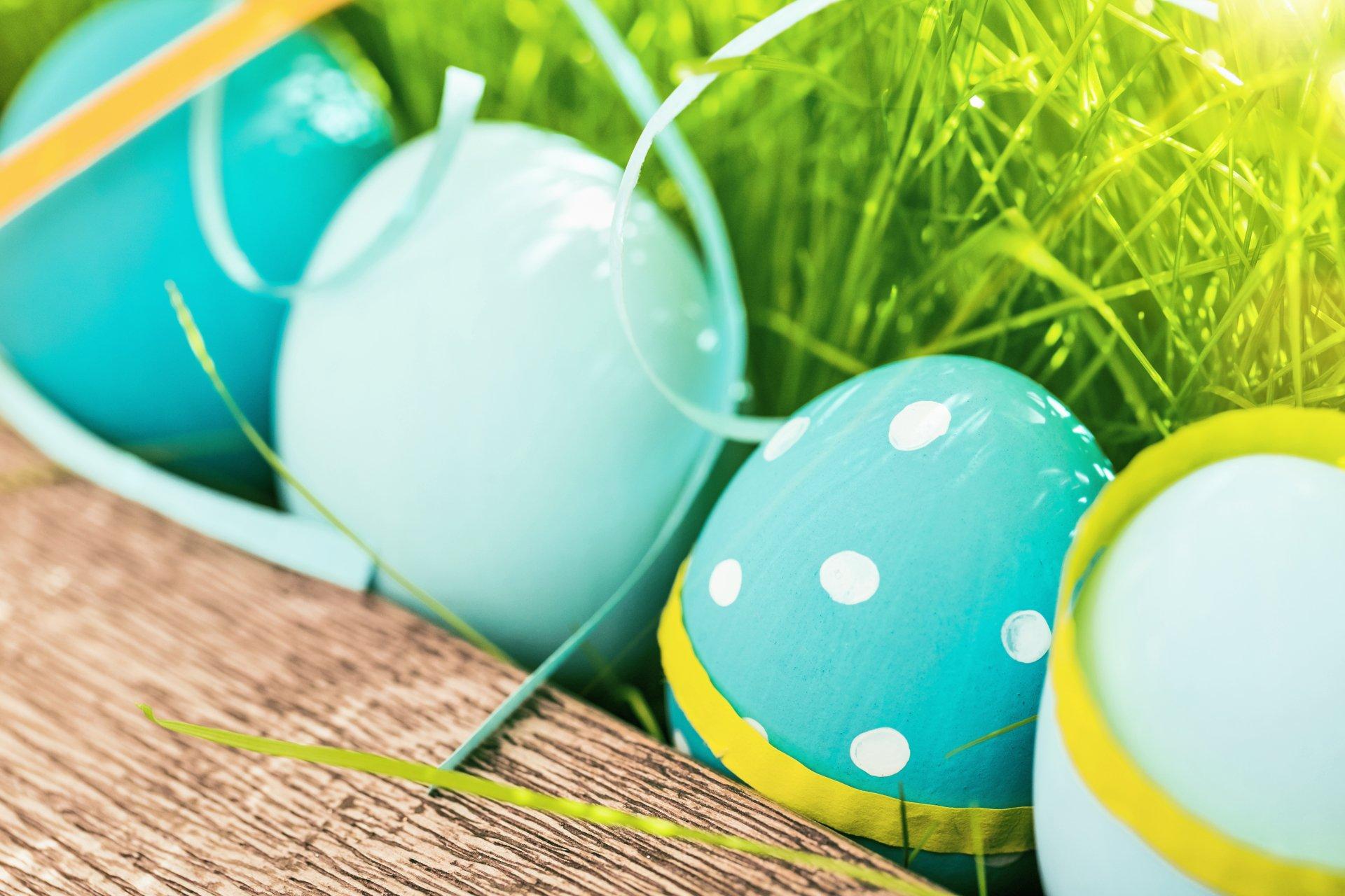 Праздничные - Пасха  Easter Egg Весна Трава Обои