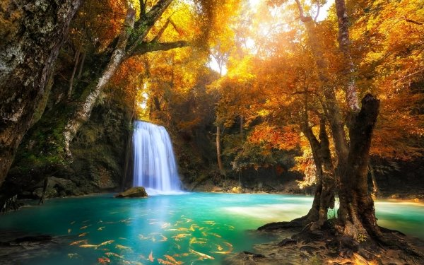 Earth Erawan Waterfall Waterfalls Waterfall Thailand Forest Tree Fall Foliage Fish Pond Turquoise Tropical Nature HD Wallpaper | Background Image