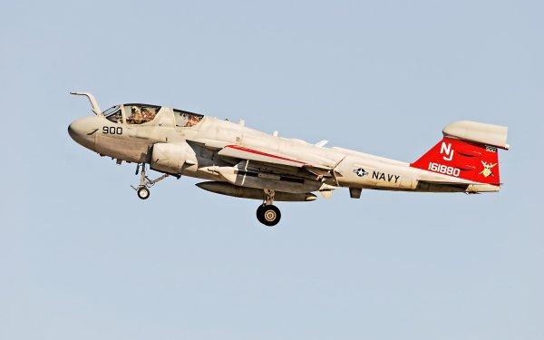 Military Northrop Grumman EA-6B Prowler Jet Fighters Jet Fighter Aircraft Warplane Navy HD Wallpaper   Background Image