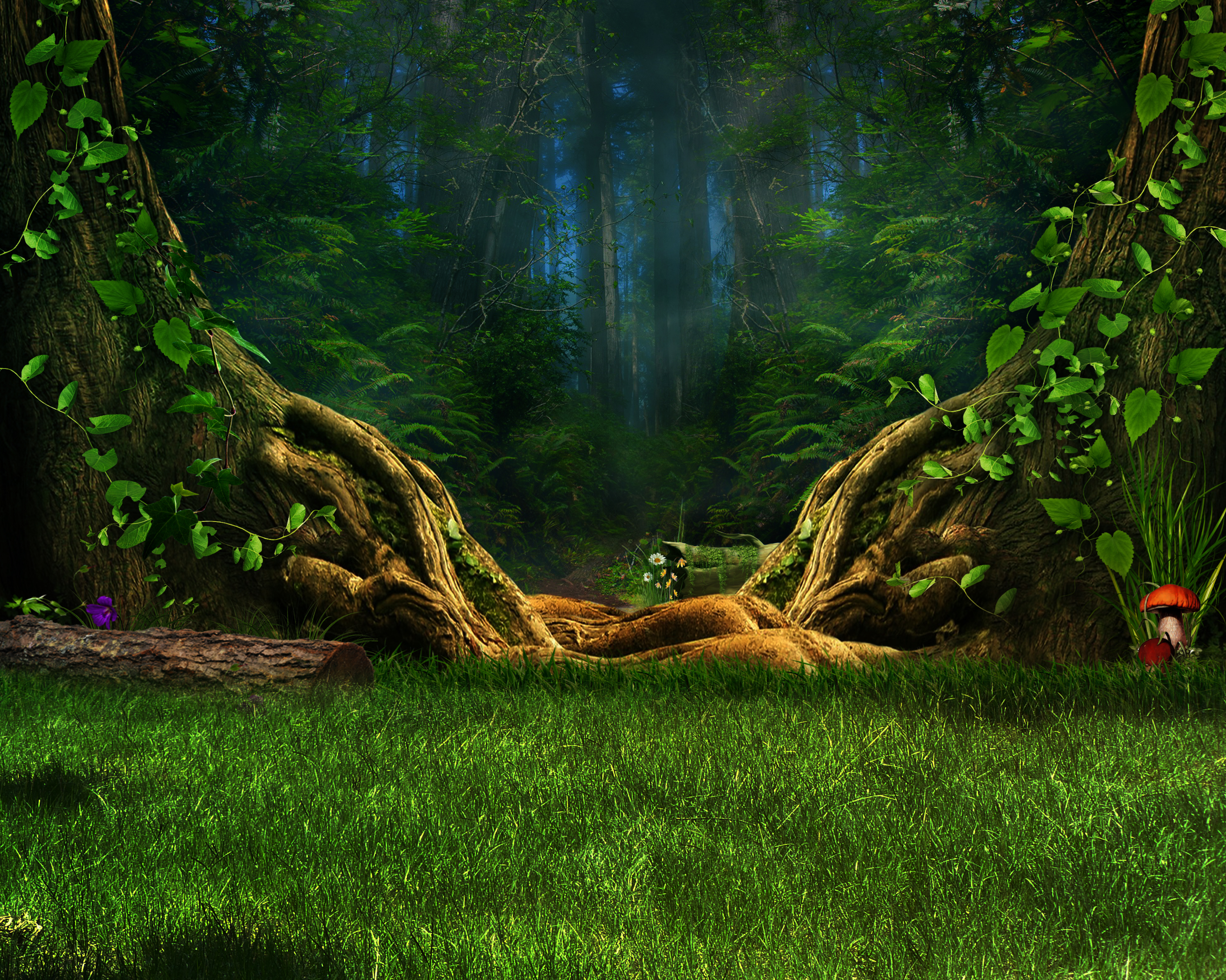 Enchanted Forest HD Wallpaper