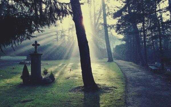 Religious Cemetery Light Dark Grave Gravestone Morning Fog Sunshine Glow Atmosphere Cross HD Wallpaper | Background Image