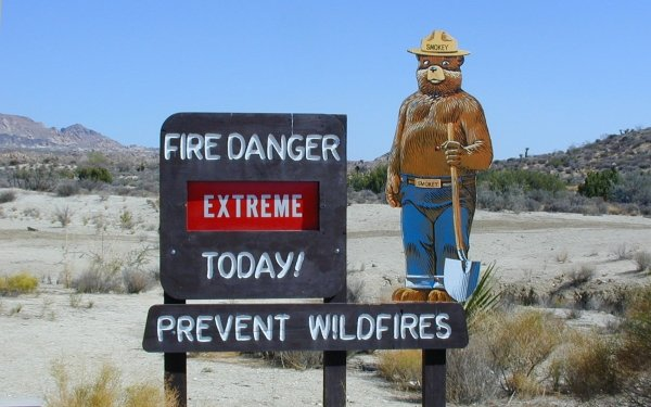 Misc Sign Warning Fire Danger USA Bear HD Wallpaper | Background Image