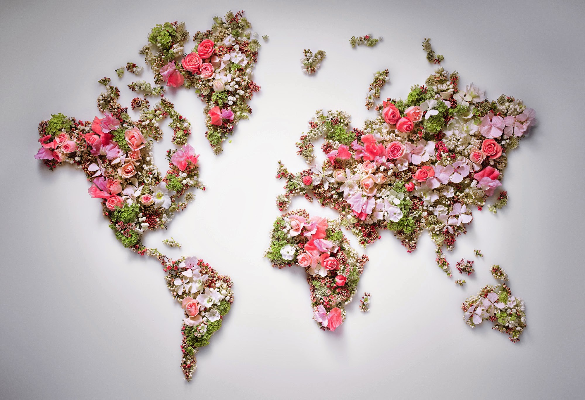 Flower World Map Hd Wallpaper Background Image 2000x1369 Id