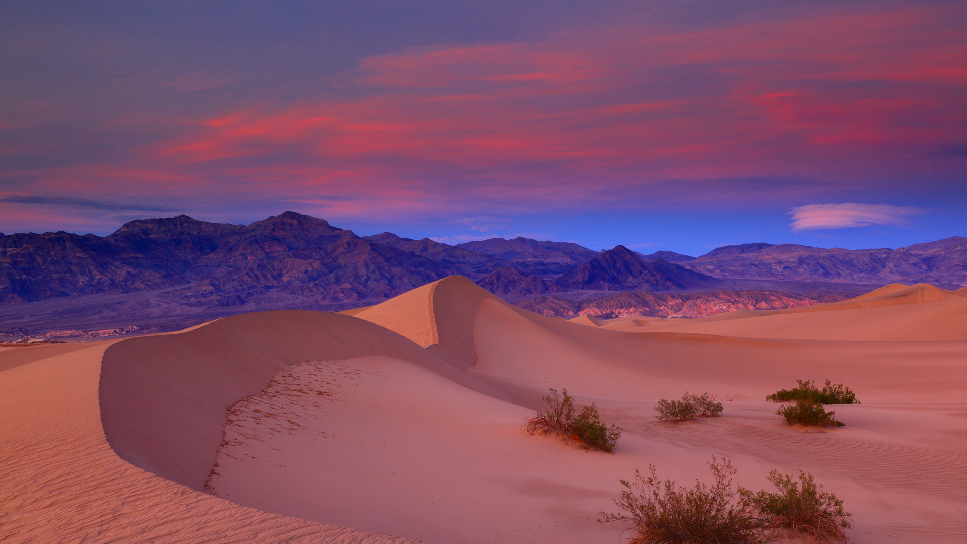 desert sunset death - photo #8