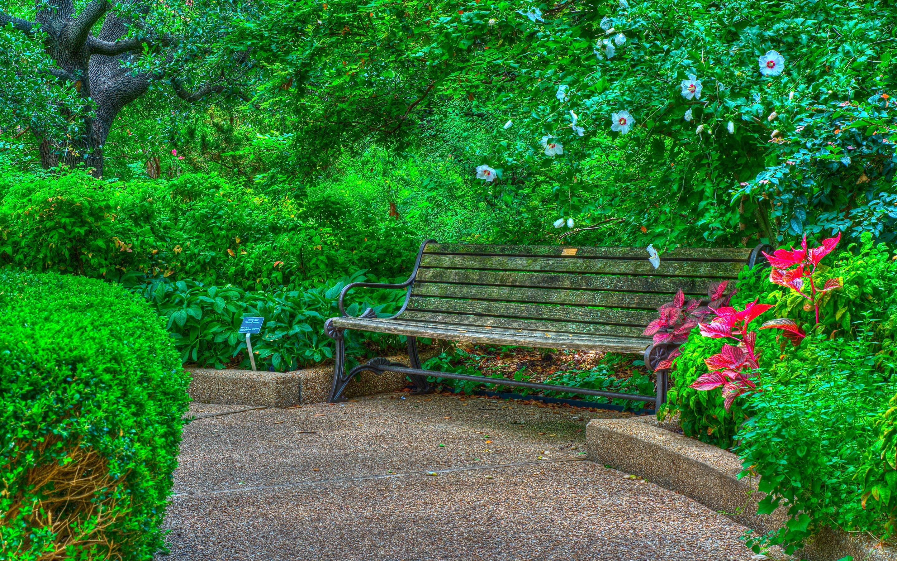 Bench In Spring Park Hd Wallpaper Background Image 2880x1800