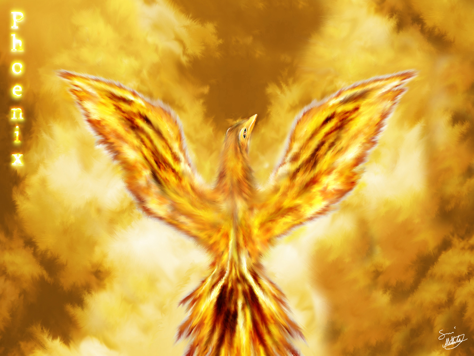 Phoenix wallpaper and background 1600x1200 id 697053 for Gold bird wallpaper