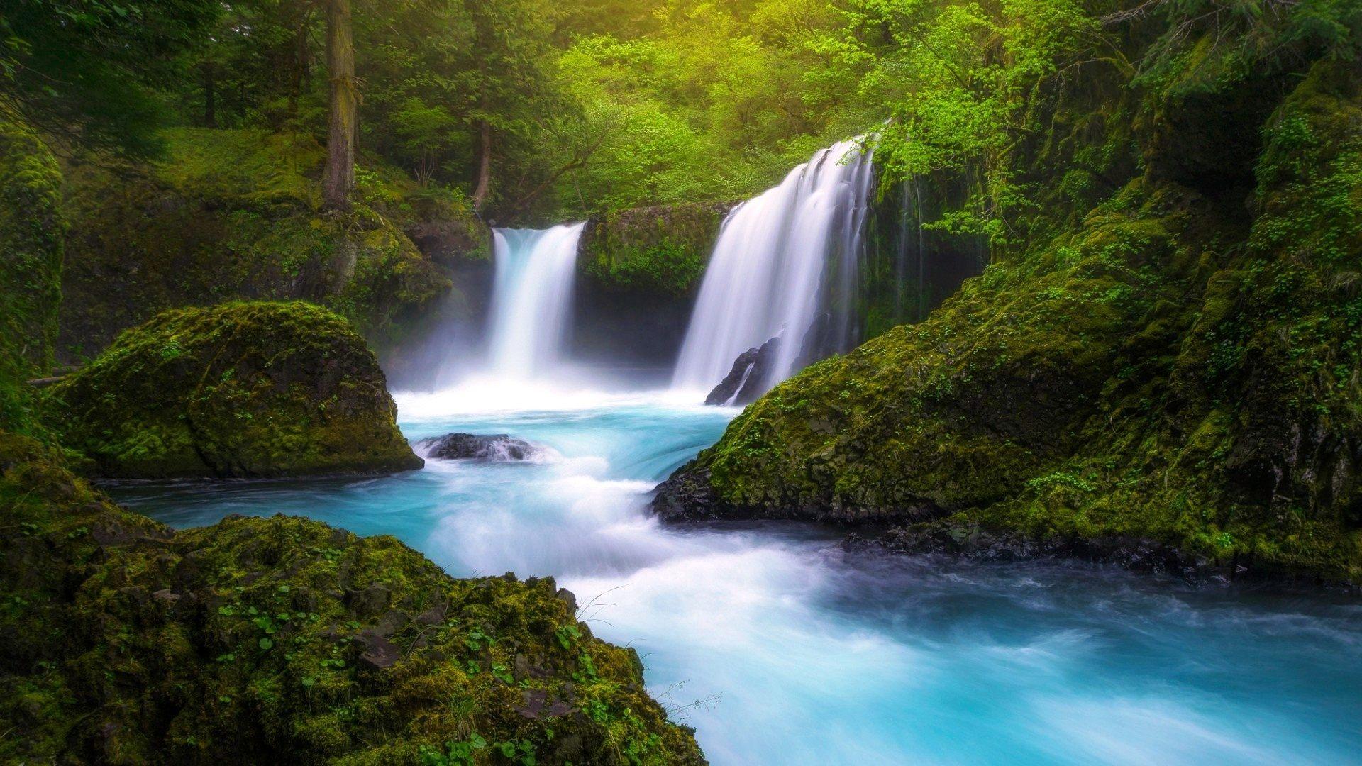 Green Forest Waterfall HD Wallpaper