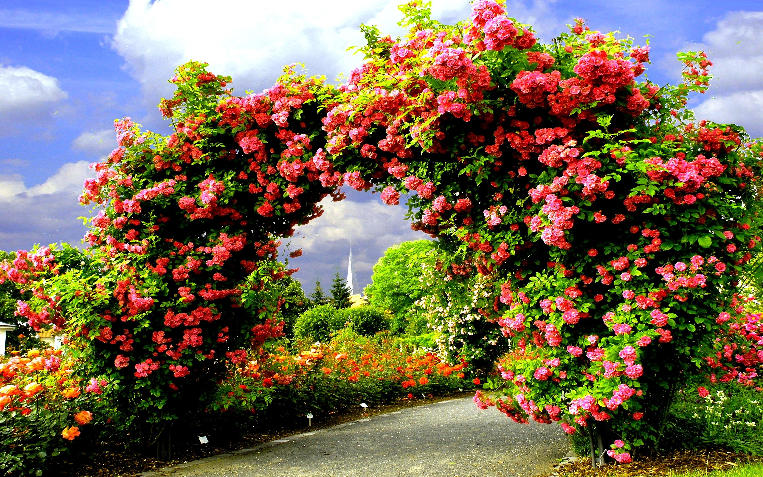 Arch Of Roses HD Wallpaper