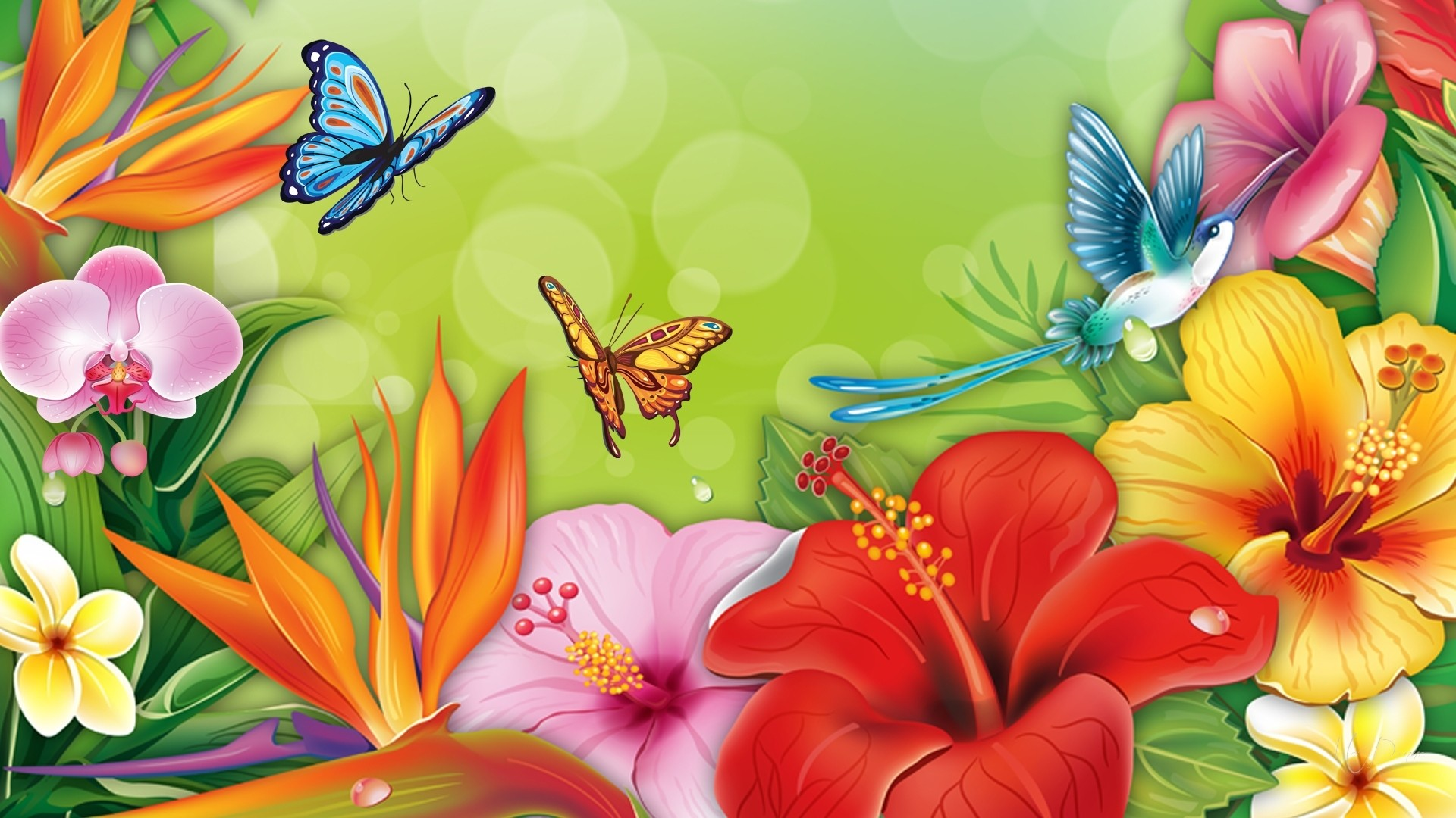 Flowers And Butterflies Hd Wallpaper Background Image