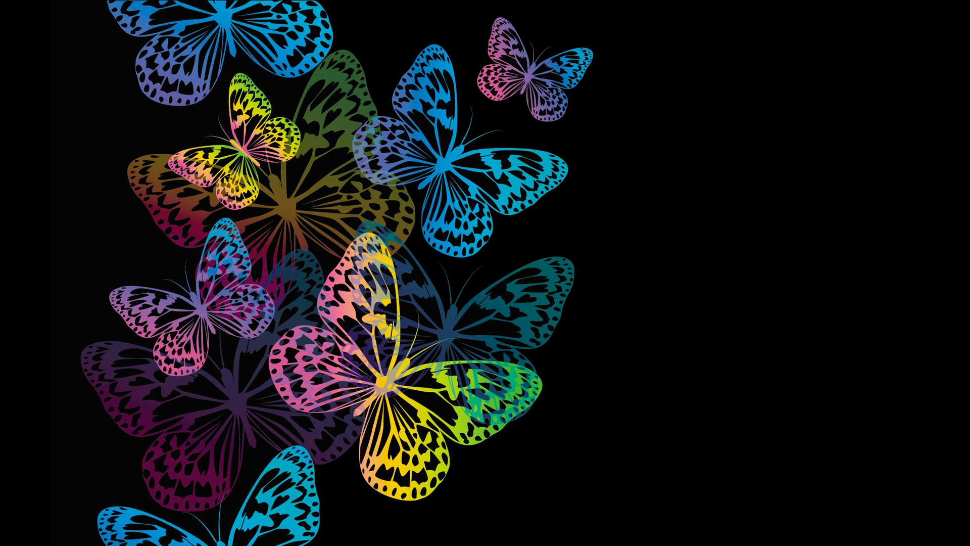 Colorful Butterflies Fondo De Pantalla Hd Fondo De