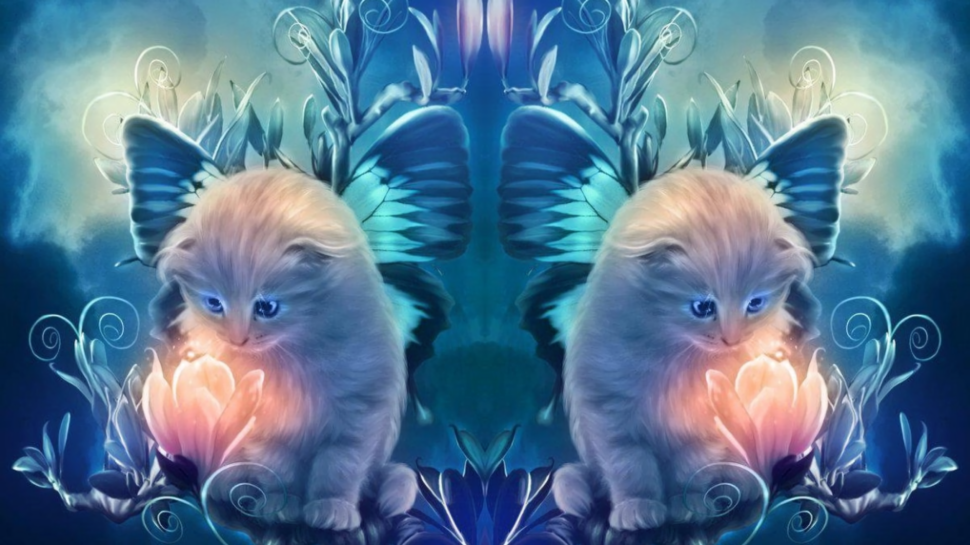 Angel Cats Hd Wallpaper Background Image 1920x1080 Id 702640 Wallpaper Abyss
