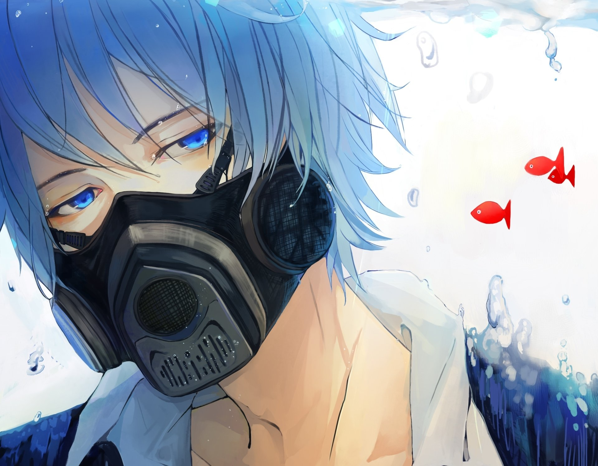 Wallpapers ID:702482