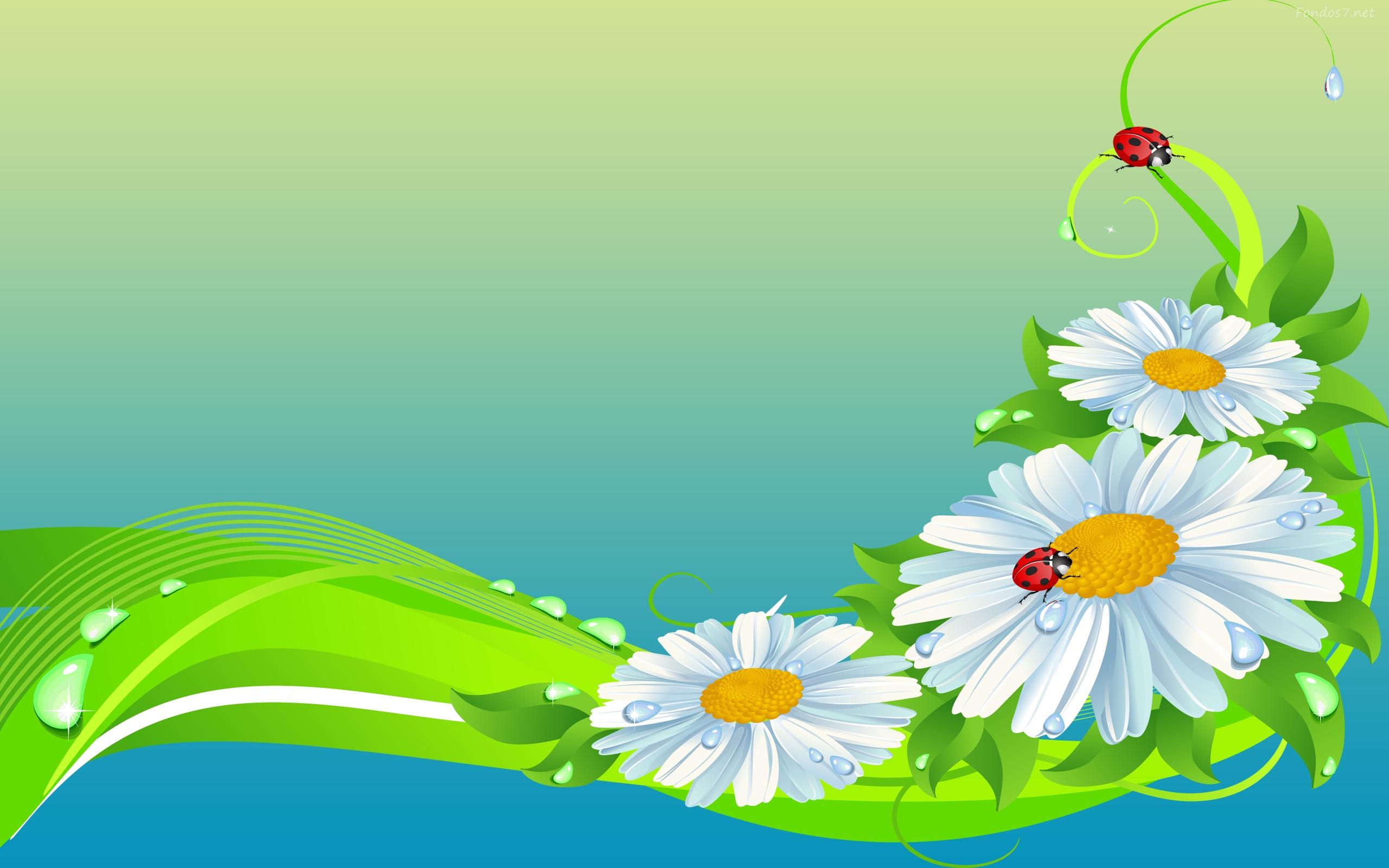 Ladybugs on daisies fondo de pantalla hd fondo de for Fondos de escritorio gratis
