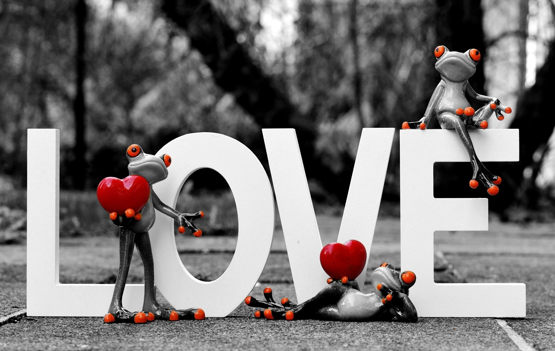 Photography - Love  Frog Figurine Selective Color Valentine's Day Wallpaper