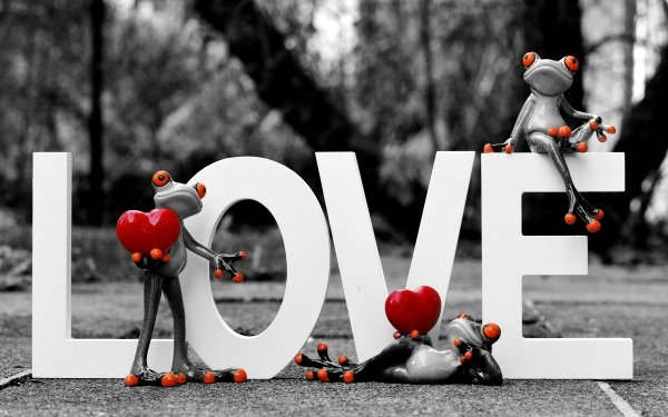 Photography Love Frog Selective Color Figurine Valentine's Day HD Wallpaper | Background Image