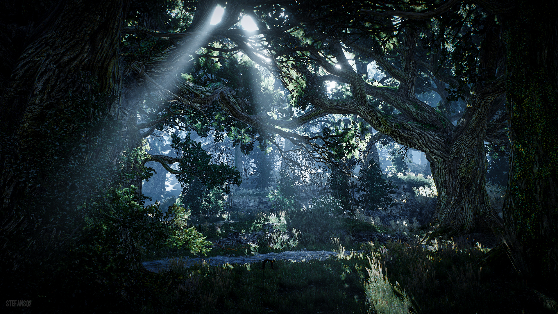 the witcher 3 wild hunt skellige forest hd wallpaper backgroundthe witcher 3 wild hunt skellige forest