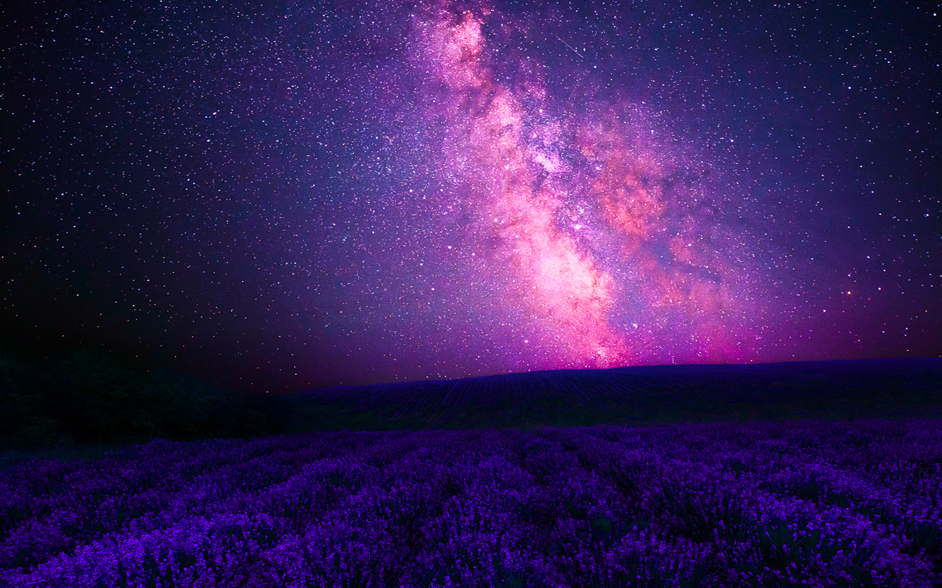 Pink Galaxy Over Lavender Field Full HD Wallpaper And Background