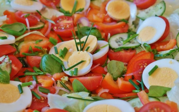 Food Salad Egg Tomato Cucumber Lunch HD Wallpaper | Background Image