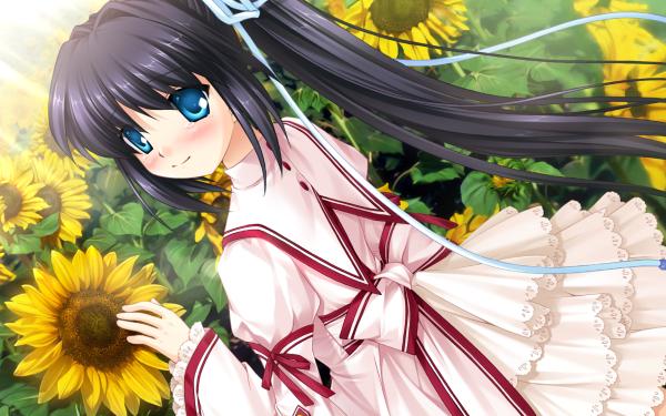 Anime Rewrite Lucia Konohana HD Wallpaper | Background Image