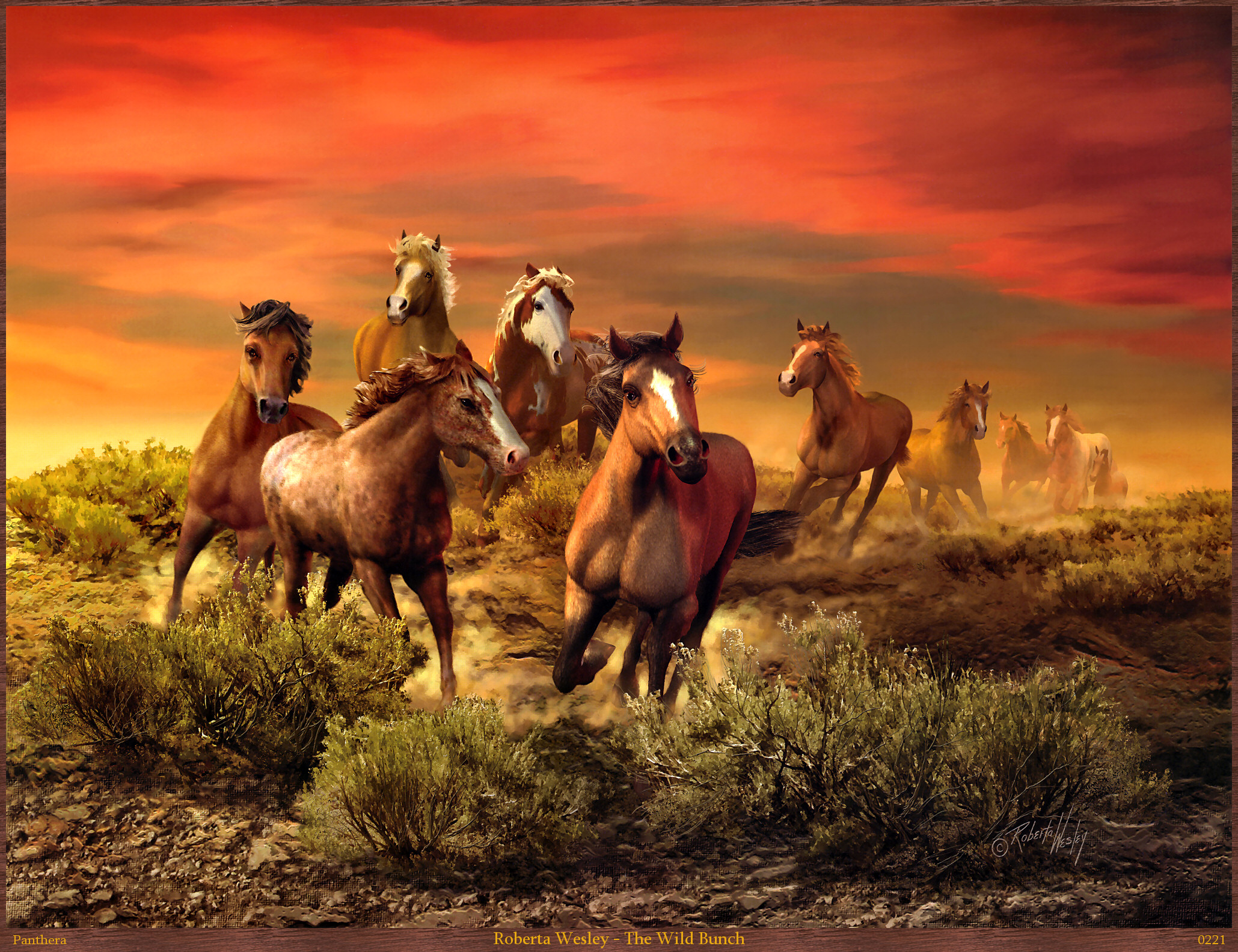 A Group Of Wild Horses Racing At Sunset Full HD Wallpaper And