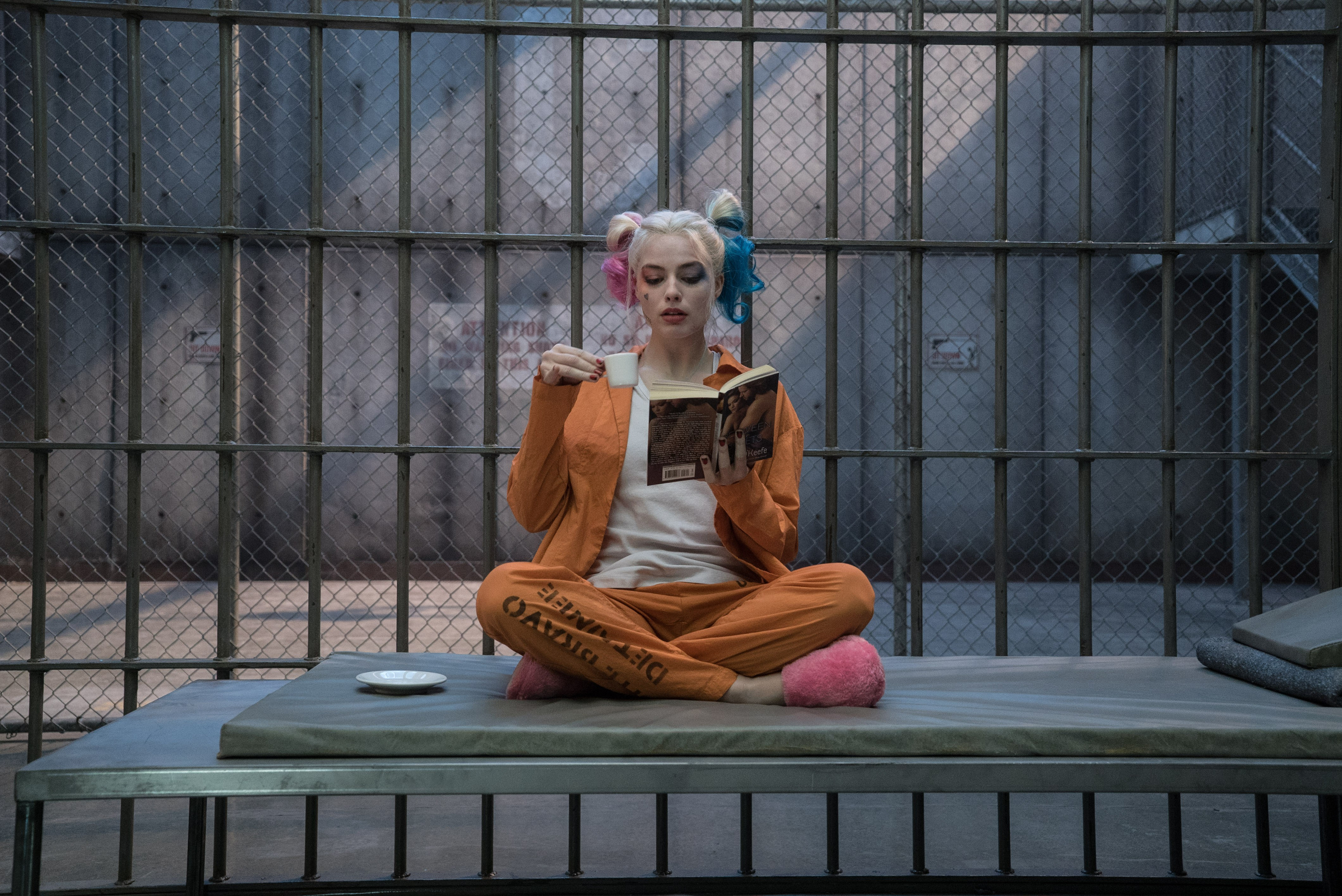 433 Harley Quinn Hd Wallpapers Background Images Wallpaper Abyss