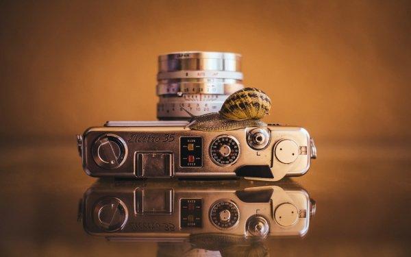 Man Made Camera Reflection Snail HD Wallpaper   Background Image