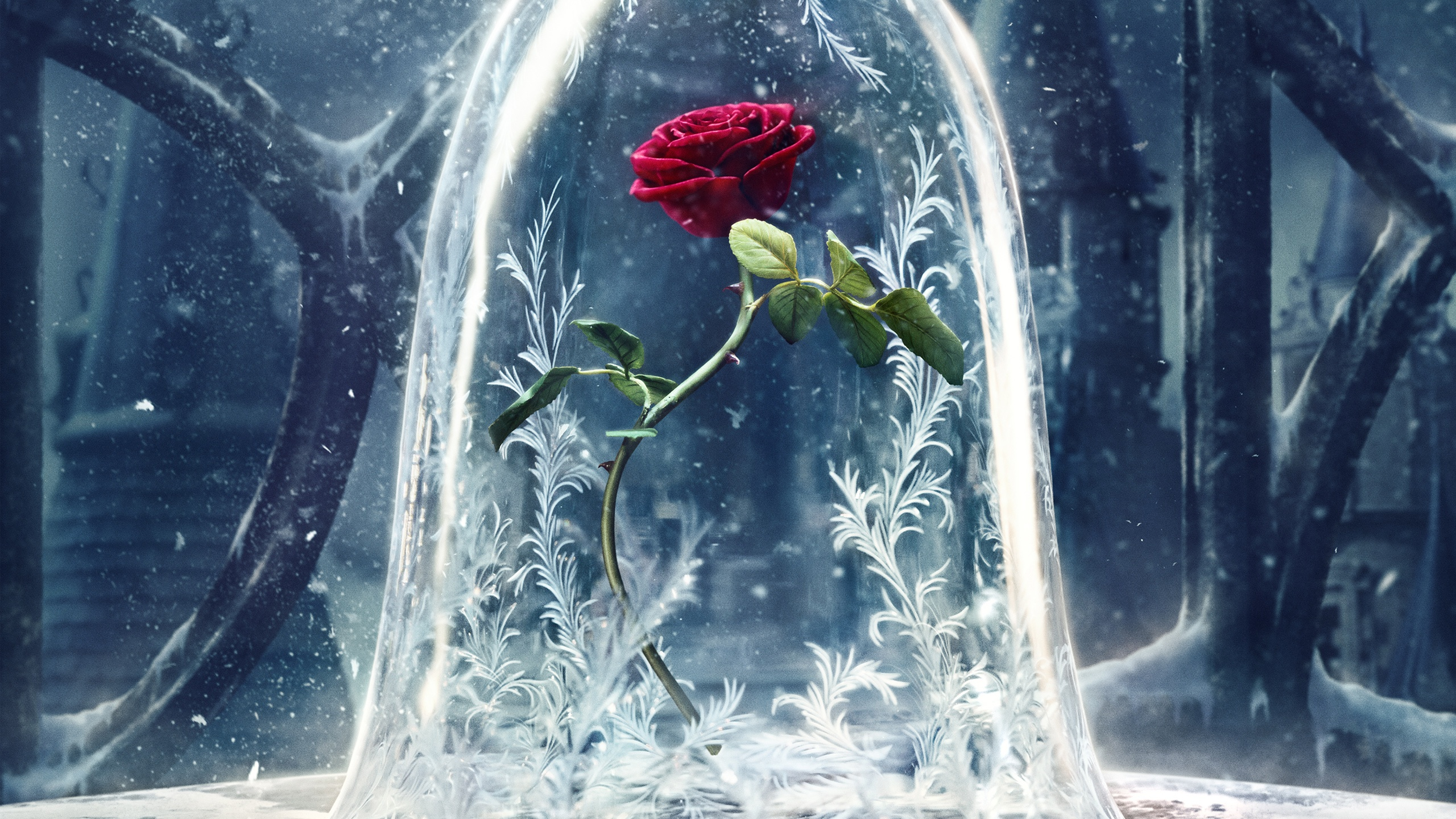 26 Beauty And The Beast 2017 Hd Wallpapers Background Images