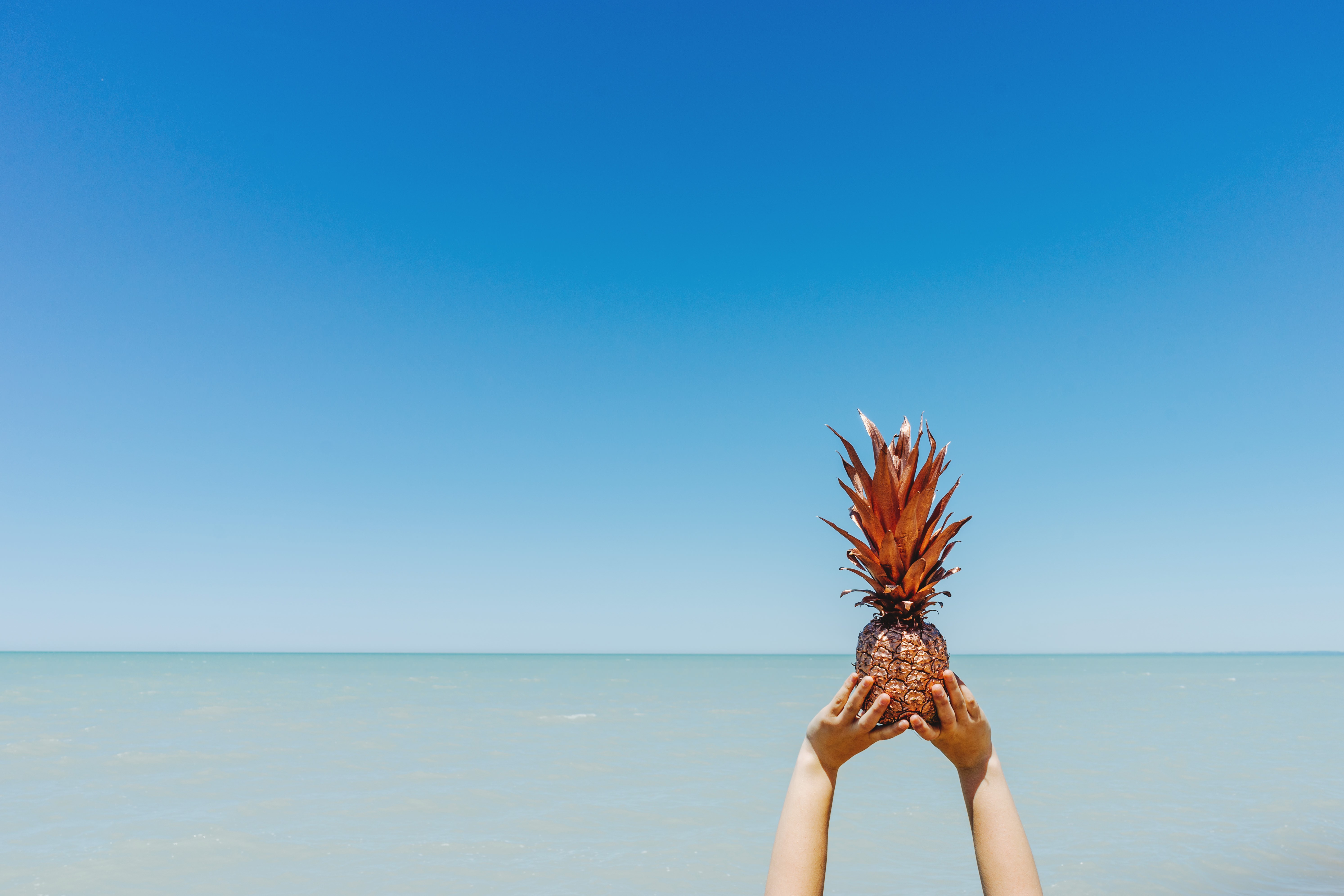6 4K Ultra HD Pineapple Wallpapers