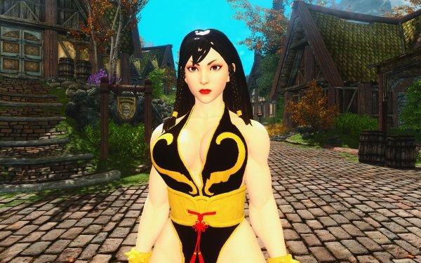 Video Game Crossover Street Fighter V Street Fighter Chun-Li Skyrim HD Wallpaper | Background Image