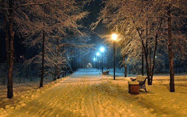 Fotografía Parque Tierra Invierno Snow Banco Árbol Noche Evening Street Light Fondo de pantalla HD | Fondo de Escritorio