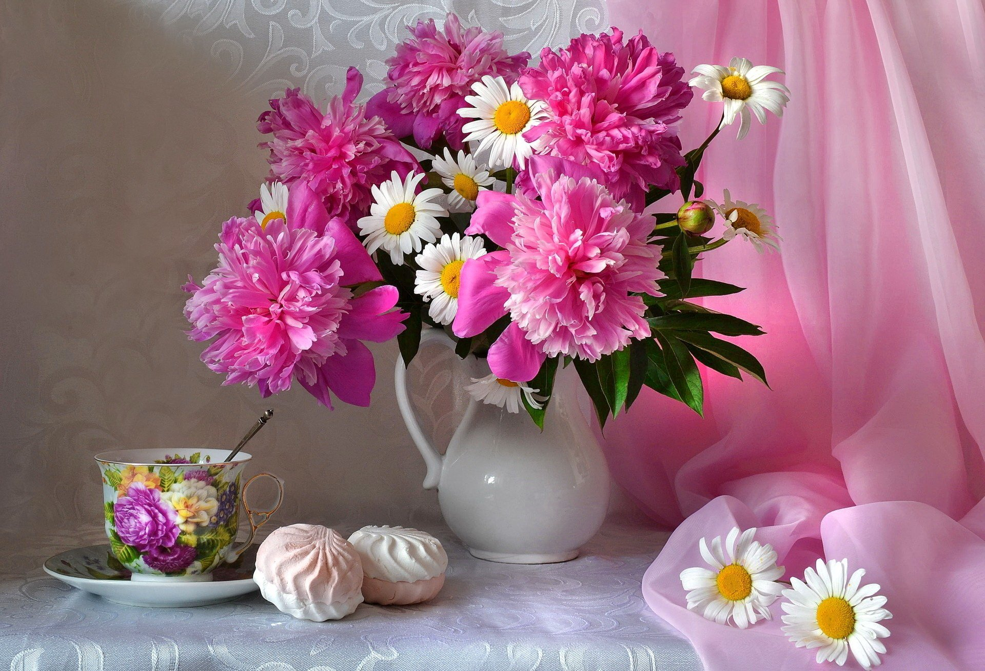 Photography - Still Life  White Flower Peony Daisy Cookie Cup Pink Flower Flower Scarf Wallpaper
