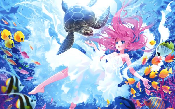 Anime Original Turtle Pink Hair Underwater Fish HD Wallpaper   Background Image