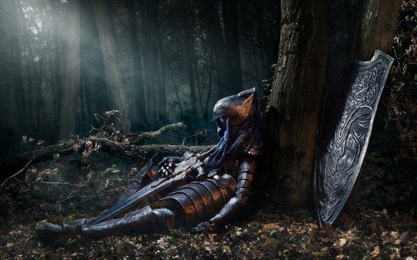 Jeux Vidéo Dark Souls Forêt Chevalier Artorias Fond d'écran HD | Image