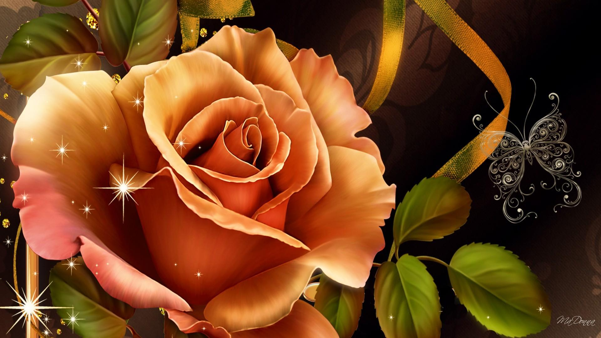 Peach Rose Hd Wallpaper Background Image 1920x1080 Id 779100