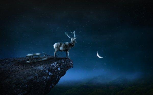 Fantasy Animal Fantasy Animals Reindeer Sleigh Night Manipulation HD Wallpaper   Background Image