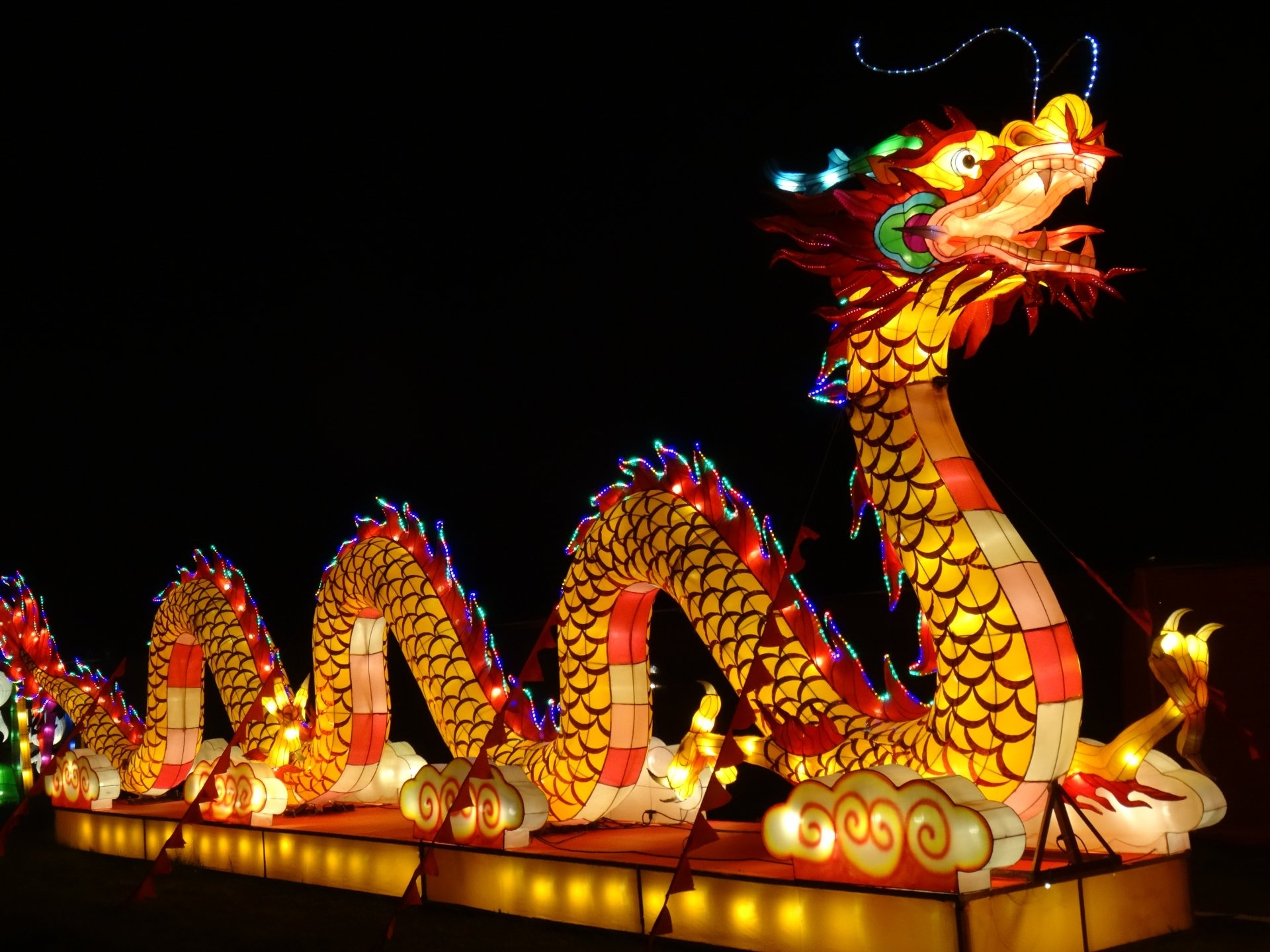 Holiday - Chinese New Year  Chinese Dragon Holiday Light Colors Wallpaper