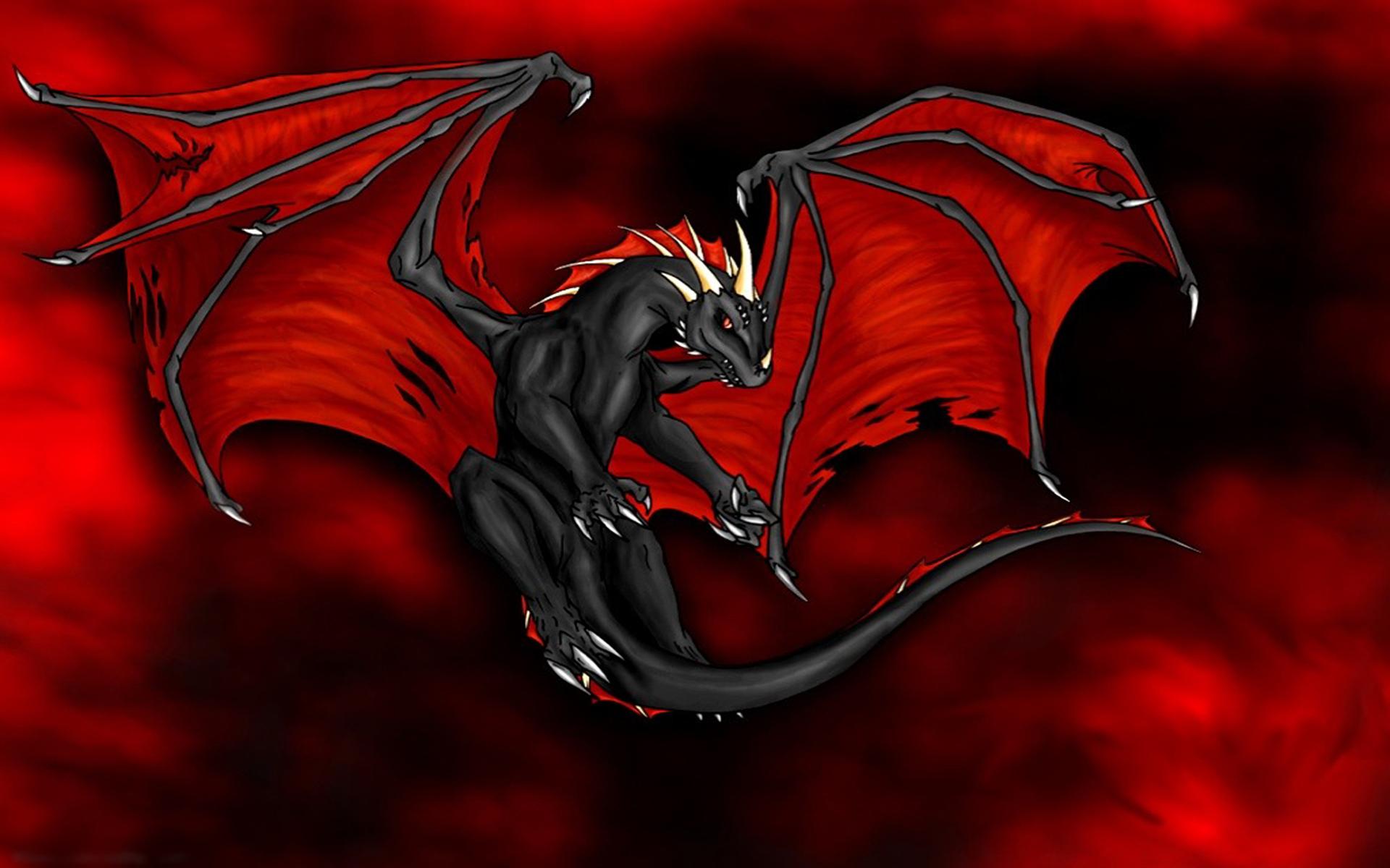 Flying Dragon Fondo De Pantalla Hd Fondo De Escritorio