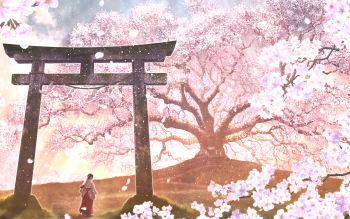38 Shrine Hd Wallpapers Background Images Wallpaper Abyss