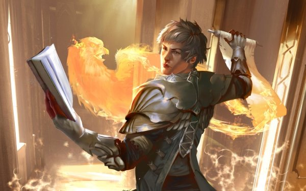 Game Arena: the Contest Mage Phoenix Book Armor HD Wallpaper   Background Image