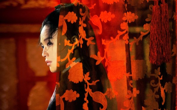 Movie The Assassin HD Wallpaper   Background Image