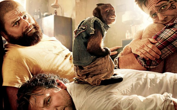 Movie The Hangover Part II Bradley Cooper Ed Helms Zach Galifianakis HD Wallpaper | Background Image