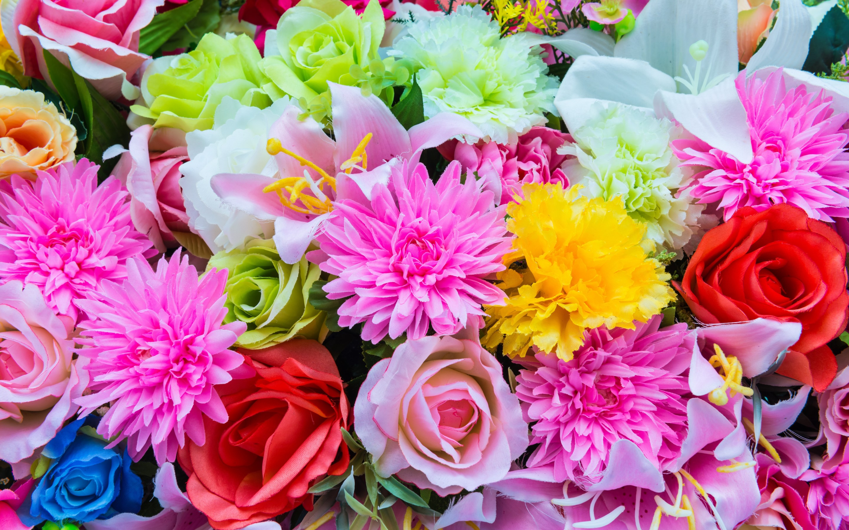Colorful Spring Flowers Hd Wallpaper Background Image 2880x1800