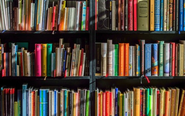 Man Made Book Library Shadow HD Wallpaper | Background Image