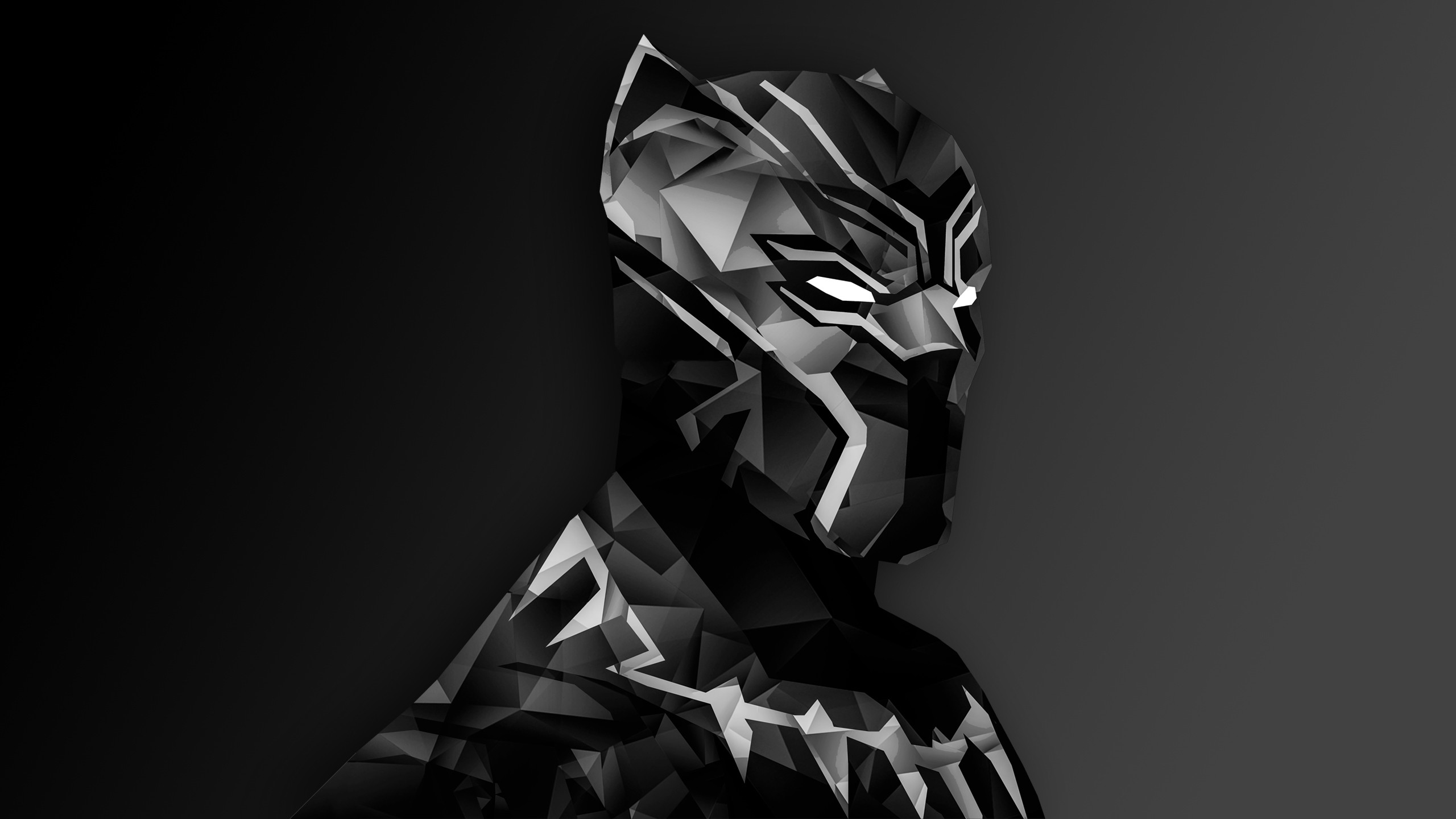 Populaire Black Panther Full HD Wallpaper and Background Image | 2560x1440  DD84