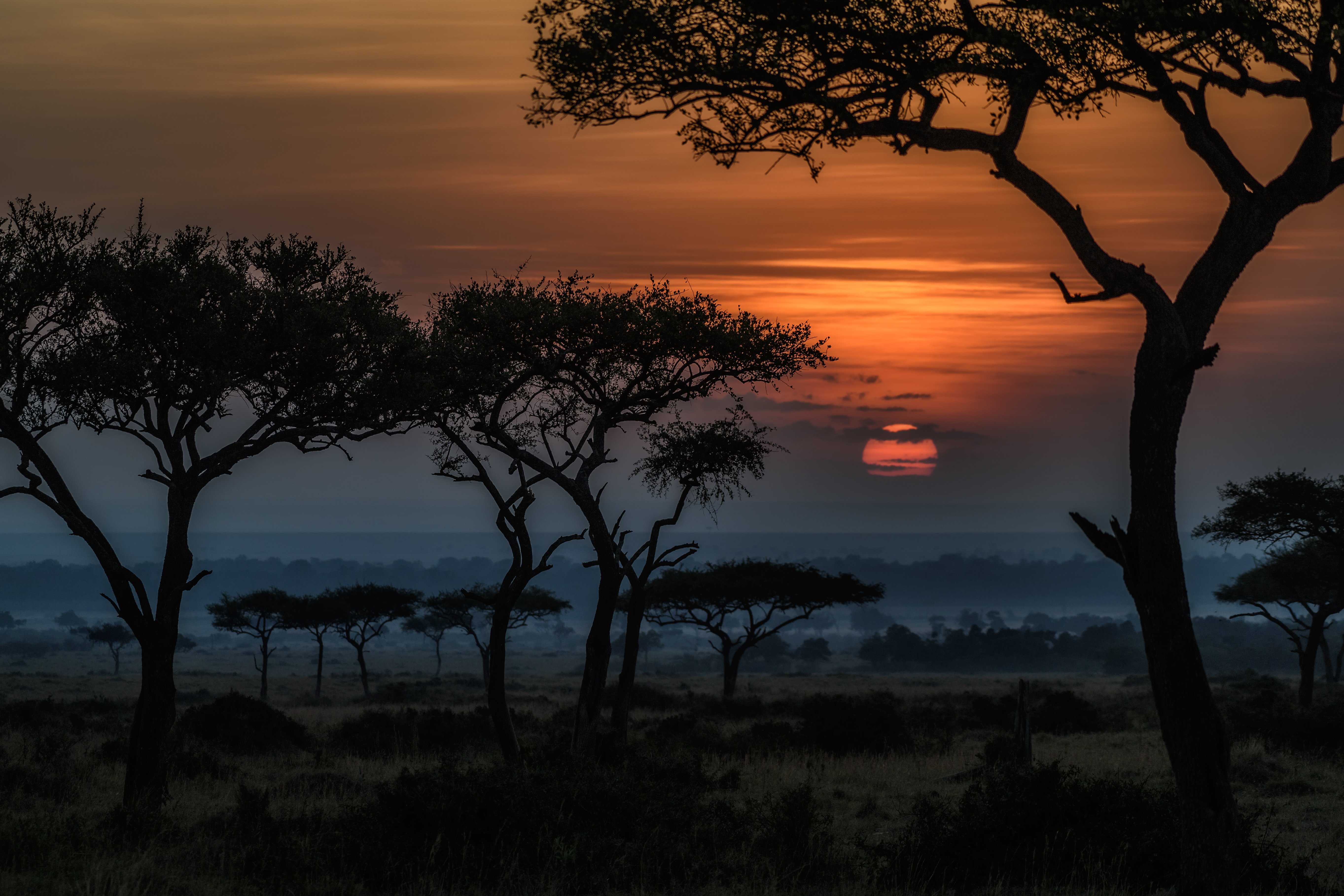 229 Africa Hd Wallpapers Background Images Wallpaper Abyss