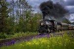Preview Trains: Steam Trains